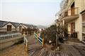 茶香麗舍度假民宿