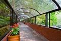 透明花園通道