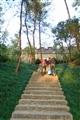 園區步道階梯