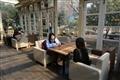 玻璃屋裡用餐還能享受戶外風光。