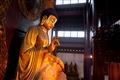 釋迦牟尼蓮花坐像