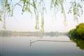 湖面倒映著天色與柳枝