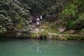 翠綠的池水
