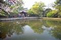 花港觀魚魚池