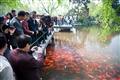成群遊客與成群魚兒