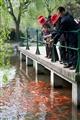 遊客觀賞魚群