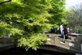 平湖秋月拱橋