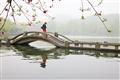 拱橋上行人與水面倒影