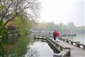 遊客漫步於曲橋間欣賞西湖美景