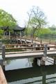 翠綠池面倒映小橋光影