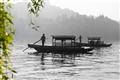 映波橋-岸邊垂柳映襯著前方湖面輕駛的遊船