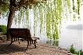 映波橋-堤邊坐椅正是悠閒欣賞西湖美景的最佳地點