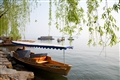 映波橋-垂柳小船妝點著西湖美麗景緻