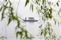 西湖畫舫遊船