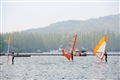 一群帆船悠遊於水上