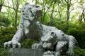 遊客最愛合影的老虎石刻雕像