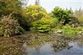 水池孕育豐富生態