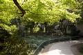 園內步道綠木扶疏