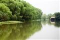 遊船與水道景觀