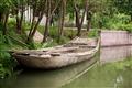 停靠岸邊的木船
