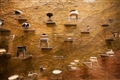 各段兩渚文化時期文物