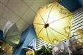 各式各樣的傘
