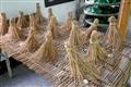 蠶絲與稻草