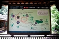 天成野櫧林地圖